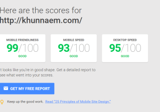 PageSpeed Insight Result