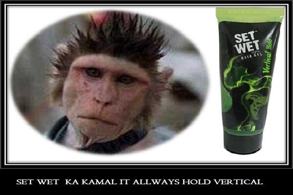 set-wet-hair-gel-vertical-hold-monkey-hair-style