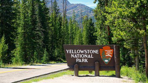 nature_yellowstone park
