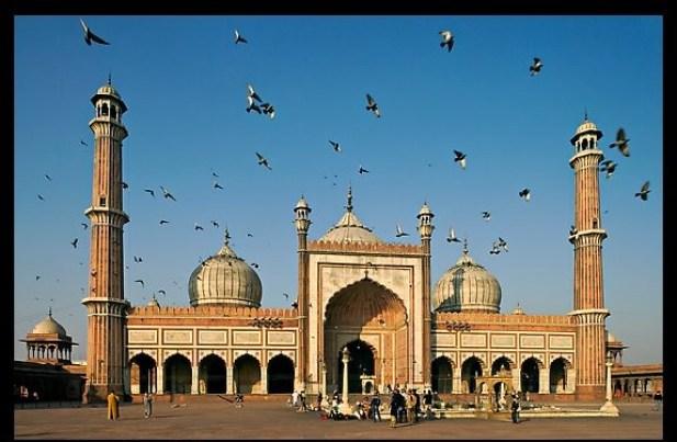 Jama Masjid with pigeons flying. New Delhi, India