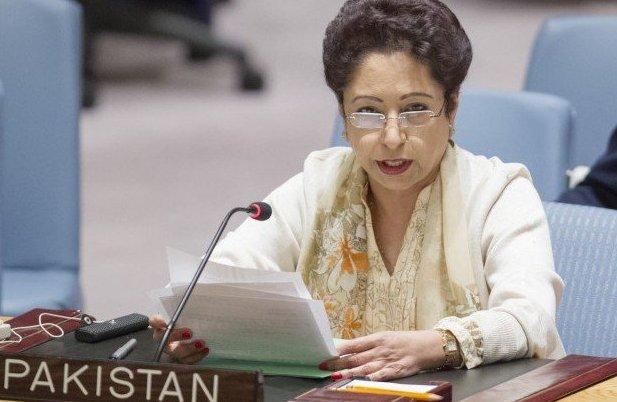 د متحده قامونو امن مشنز کښې د پاکستان کردار اهم دے،مليحه لودهې