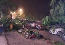 اسلام آباد کښې تيز طوفان، يو شمير سائن بورډونه او ونې راپريوتى