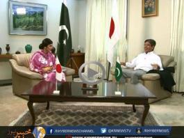 Diplomatic Enclave With Nadia Khattak Interview's Japanese Ambassador Hiroshi Inomata ( 09-05-15 )