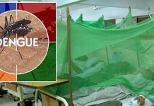 Dengue patients isolation ward in Peshawar