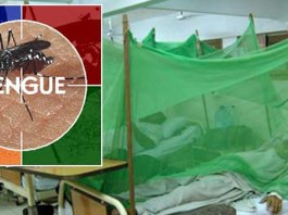 Dengue virus affects 900 more people in Khyber Pakhtunkhwa