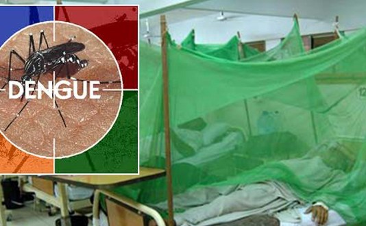 Four people test positive for dengue in Peshawar