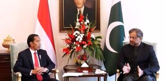 PM Abbasi, Indonesian President discuss bilateral matters