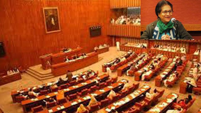 Pakistani troops in Saudi Arabia, Senate told