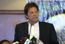 PML-N govt responsible for destroying country's economy: Imran Khan