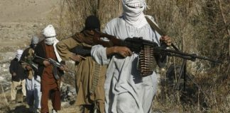 Commander among 4 Taliban fighters killed in Farah province