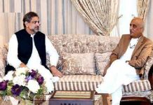 PM Abbasi, Khursheed Shah discuss caretaker set-up
