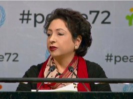 Pakistan urges UN to play role for resolving international disputes