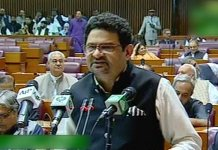 Rs 9.5 bn allocated for NPGP in next fiscal year: Miftah Ismail