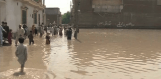 24 killed in rain related incidents in Khyber Pakhtunkhwa, Sindh