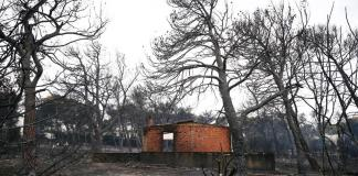 Wildfire kills at least 50 near Athens, flames trap families as they flee