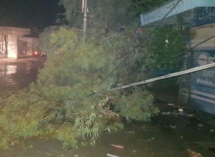 Four dead as heavy rains, gusty winds lash Mardan
