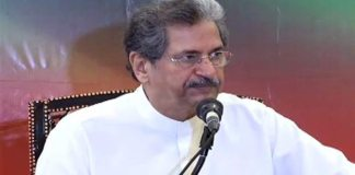 Govt devising strategy to offer jobs to PhDs: Shafqat Mahmood