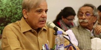 Strict action against senators who defected in no-confidence vote: Shehbaz