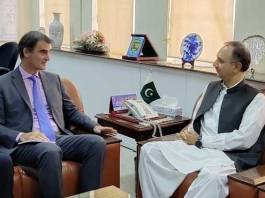 Omar Ayub briefs IMF mission on performance of power sector