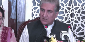 PM Imran desires to form economic strategic partnership with Turkey: FM Qureshi