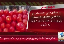 #KhyberNews #TomatoPrices #PTI