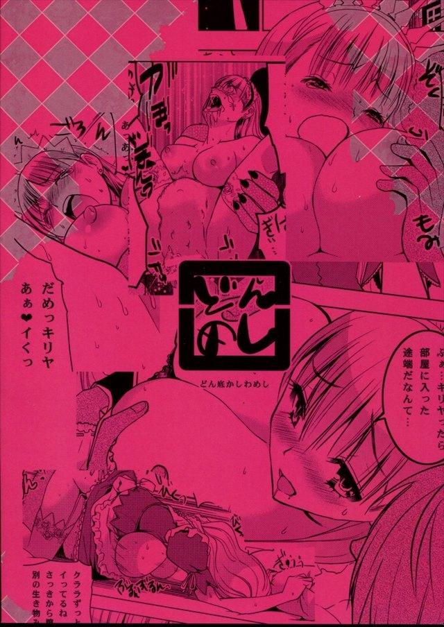 シャイニング・ウィンド エロマンガ同人誌2046