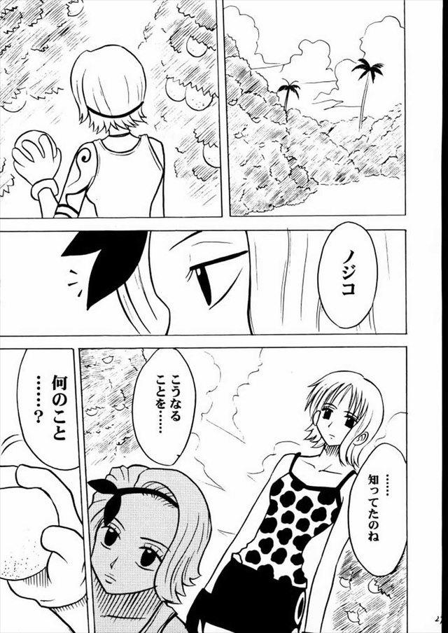ワンピース エロマンガ・同人誌5025