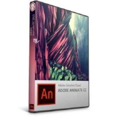 Download Adobe Animate CC 2019 Crack