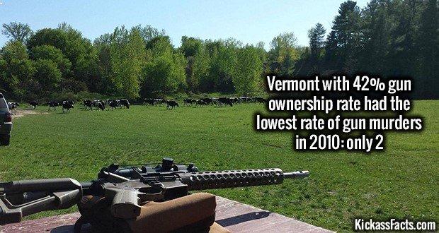 1267 Vermont Gun Shooting