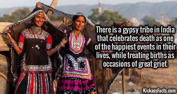 1733 Rajasthani Gypsy