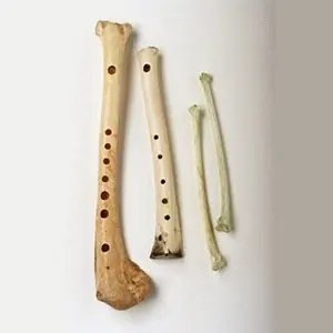 Oldest Flute-Random Kickass Facts List