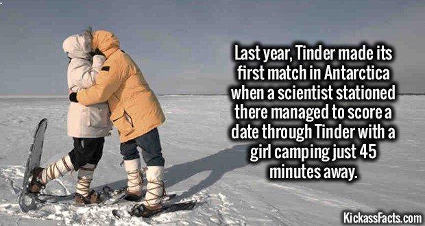 1802 Antarctica Tinder