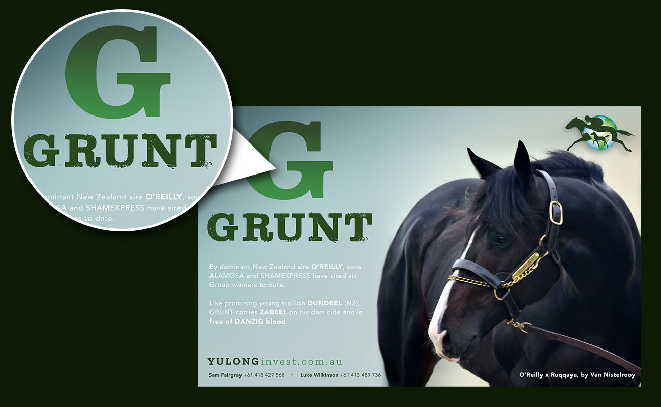 Yulong-Grunt2