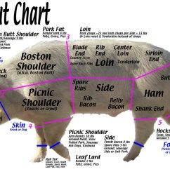 pork cuts explained kickin k ranch pork cuts diagram shoulder [ 1100 x 752 Pixel ]