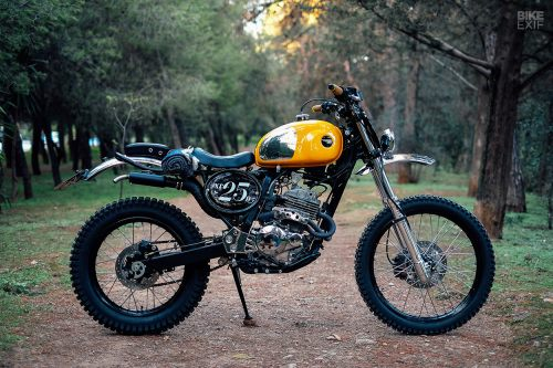 small resolution of trends in the custom world are as fickle as any other industry but there s one style that seems to be enjoying a sustained resurgence scramblers