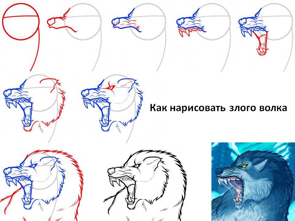 картинки нарисовать волка карандашом поэтапно картинки надписями демотиваторы