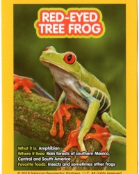 2018-april-weird-but-true-national-geographic-mcdonalds-happy-meal-toys-cards-red-eyed-tree-frog-back.jpg