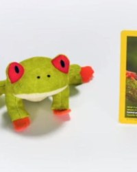 2018-april-weird-but-true-national-geographic-mcdonalds-happy-meal-toys-red-eyed-tree-frog.jpg
