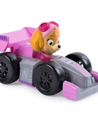 paw-patrol-rescue-racer-skye.jpg