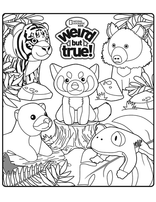 geographic kids coloring pages - photo#18