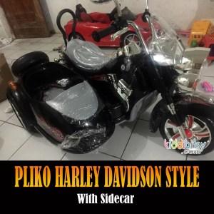 Motor Aki Harley Davidson Style Sidecar