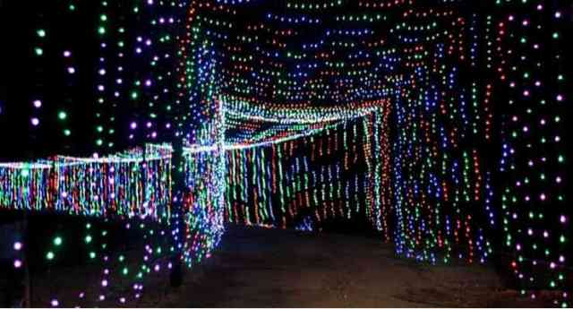 Mom Review: The Upstate Holiday Light Show