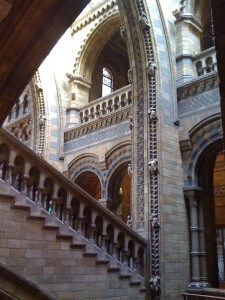 Gothic details at the Natural History Museum