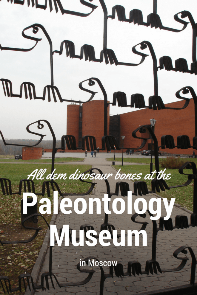 There are a LOT of dinosaur bones an other prehistoric animal remains at the Orlov Paleontology Museum in Moscow