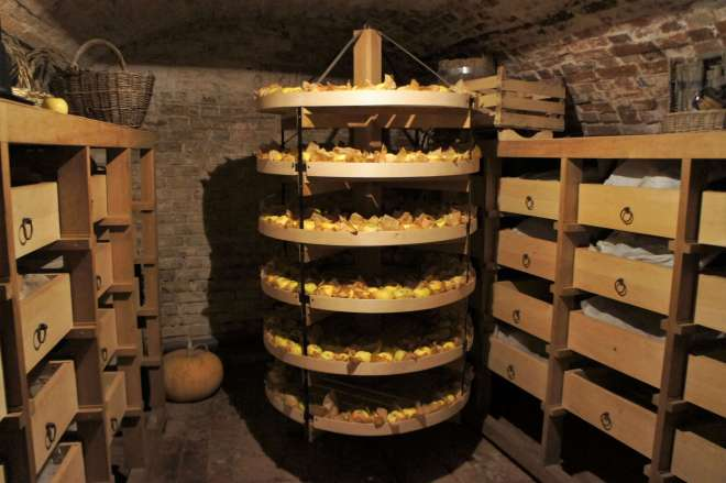 Apple cellar in the Kolomna Pastila Factory Museum