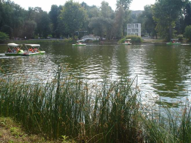 A pond surrounded by some reeds with some pedalos drifting around it. There is a small arched bridge and trees in the background, as well as a sculpture of white boxes stood on one another in a 3x3 grid
