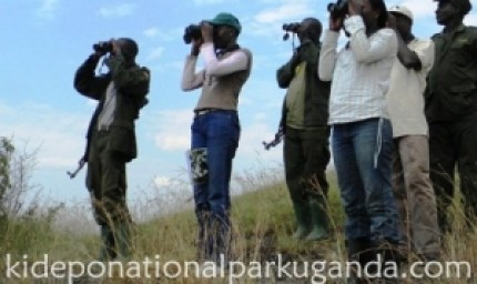 bird-watching-in-kidepo