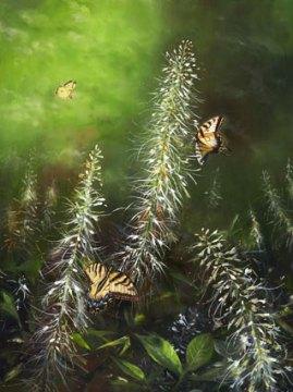 Bottlebrush & Butterflies