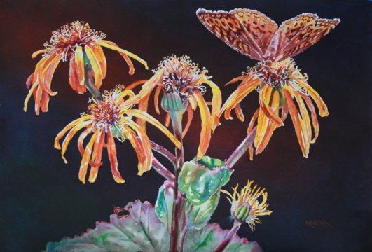 Ligularia & Fritillary