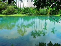 水質較一般湖迫、水塘清澈的「雷公埤」,也因為不斷冒出的湧泉活水而能保持較穩定的清涼水溫~